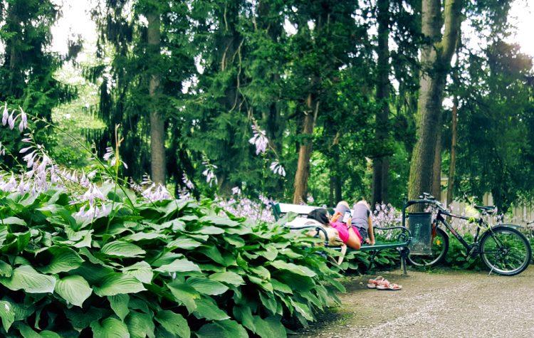innsbruck ogród cesarski hofgarten